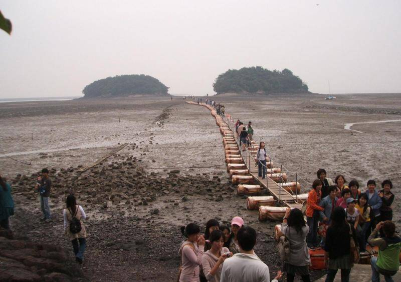 【韓国旅行】忠清南道 アンミョン島(충청남도 안면도)