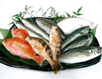 물고기, 생선(魚)の意味の違いと使い方を例文で解説