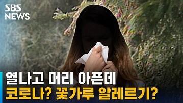 '花粉症'は韓国語で何?꽃가루 알레르기, 화분증意味と使い方を例文で解説
